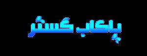 لوگوی شرکت بازرگانی پاکاب گستر